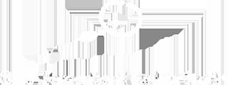 SEJ Samenbank Berlin Logo